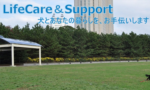 Life care&support